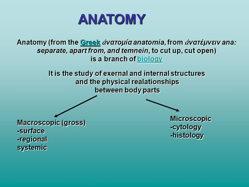 ANATOMY Anatomy (from the Greek ἀ νατομία anatomia, from ἀ νατέμνειν ana: Greek separate, apart from, and temnein, to cut up, cut open) is a branch of