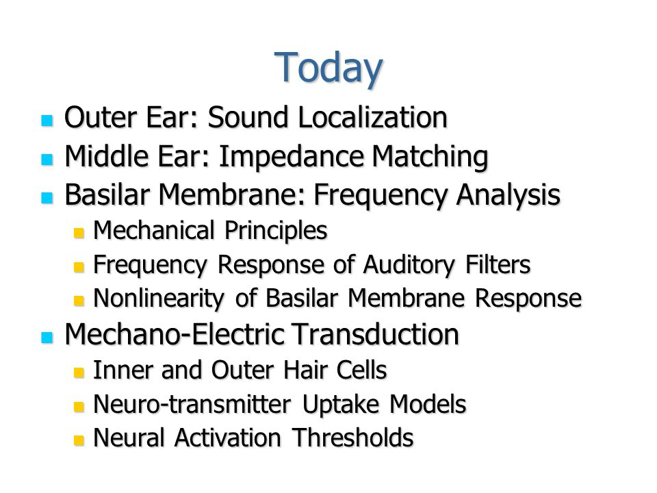 Auditory Anatomy: Overview