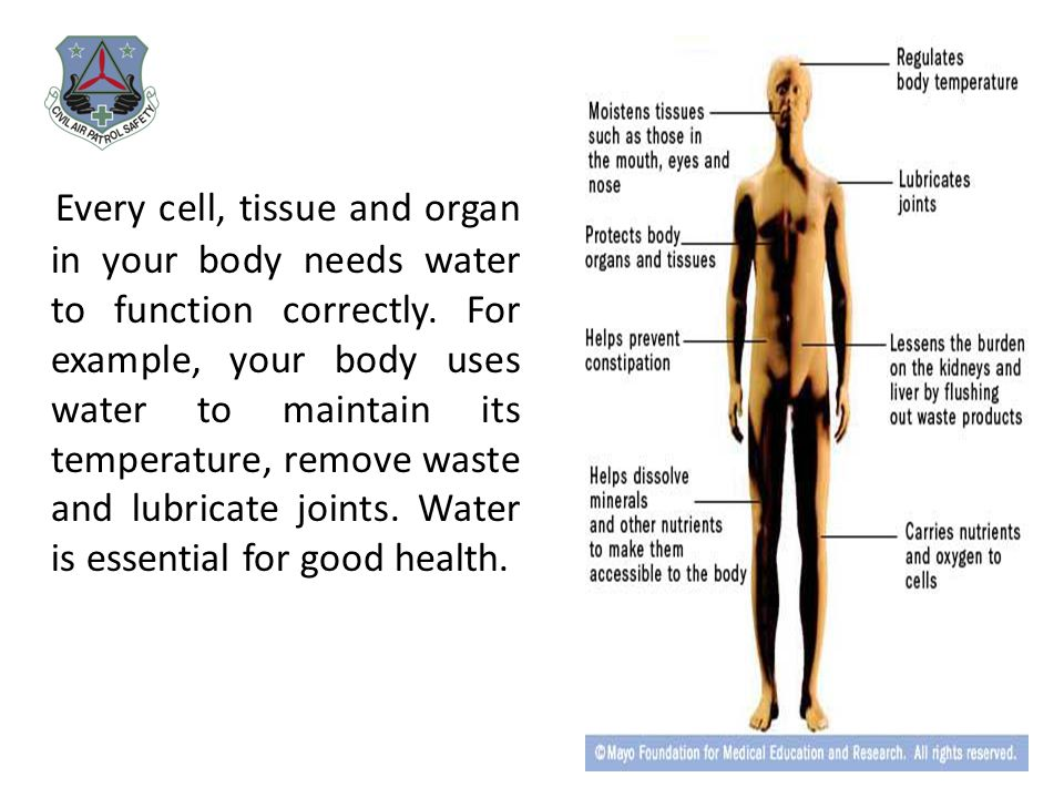 Every cell, tissue and organ in your body needs water to function correctly. For example, your body uses water to maintain its temperature, remove was