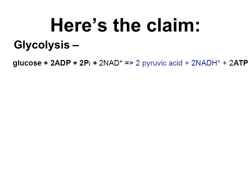 Here's the claim: Glycolysis – glucose + 2ADP + 2P i + 2NAD + => 2 pyruvic acid + 2NADH + + 2ATP