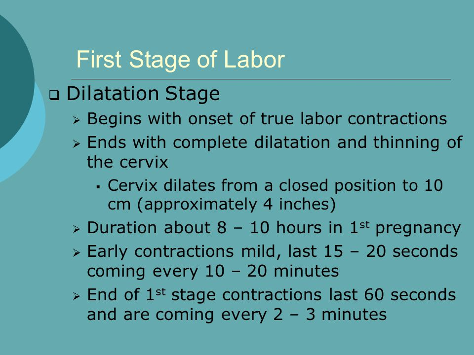 First Stage of Labor  Dilatation Stage  Begins with onset of true labor contractions  Ends with complete dilatation and thinning of the cervix  Cervix dilates from a closed position to 10 cm (approximately 4 inches)  Duration about 8 – 10 hours in 1 st pregnancy  Early contractions mild, last 15 – 20 seconds coming every 10 – 20 minutes  End of 1 st stage contractions last 60 seconds and are coming every 2 – 3 minutes
