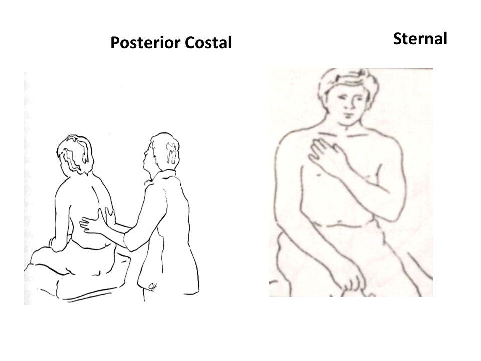 Posterior Costal Sternal