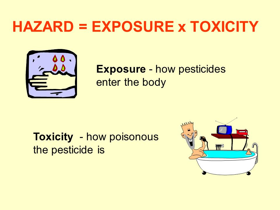 HAZARD = EXPOSURE x TOXICITY Toxicity - how poisonous the pesticide is Exposure - how pesticides enter the body