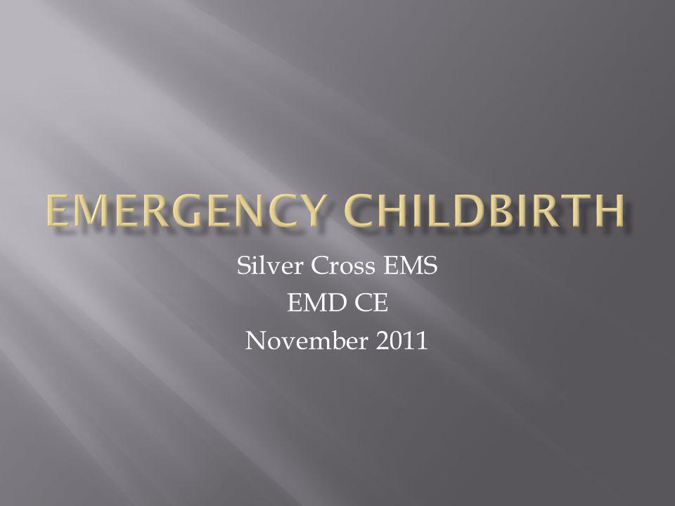 Silver Cross EMS EMD CE November 2011