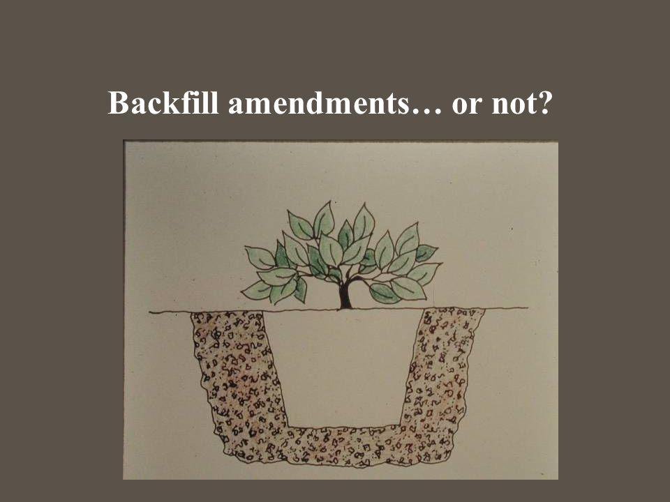 Backfill amendments… or not?