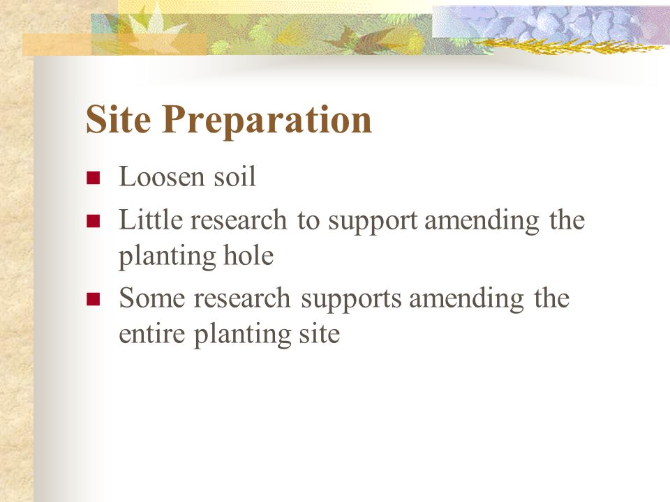 Site Preparation Loosen soil Little research to support amending the planting hole Some research supports amending the entire planting site