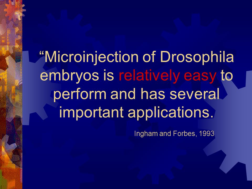 Microinjection of Drosophila embryos is relatively easy to perform and has several important applications.