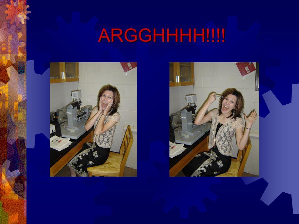 ARGGHHHH!!!!