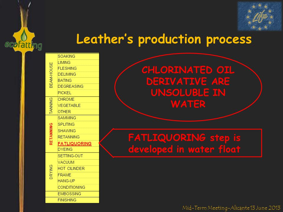 Mid-Term Meeting-Alicante 13 June 2013 Formulated Products OIL EMULSION DISPERSION IN LEATHER STRUCTURE REACH REQUIRED ARTICLE