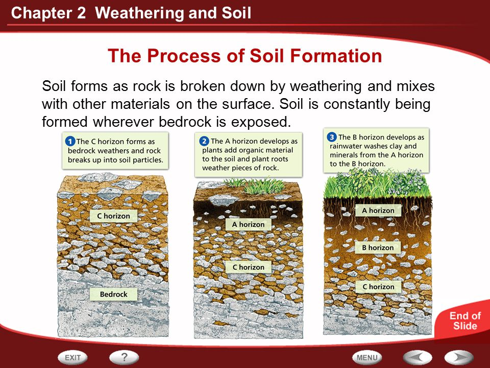 Chapter 2 Weathering and Soil The Process of Soil Formation Soil forms as rock is broken down by weathering and mixes with other materials on the surf