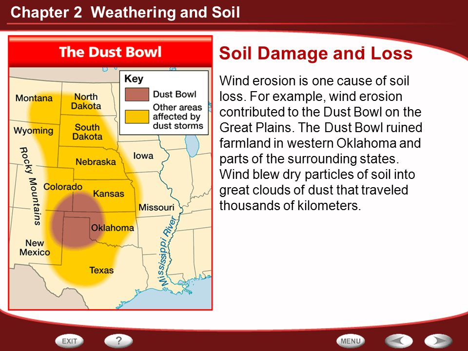 Chapter 2 Weathering and Soil Soil Damage and Loss - Wind erosion is one cause of soil loss. For example, wind erosion contributed to the Dust Bowl on