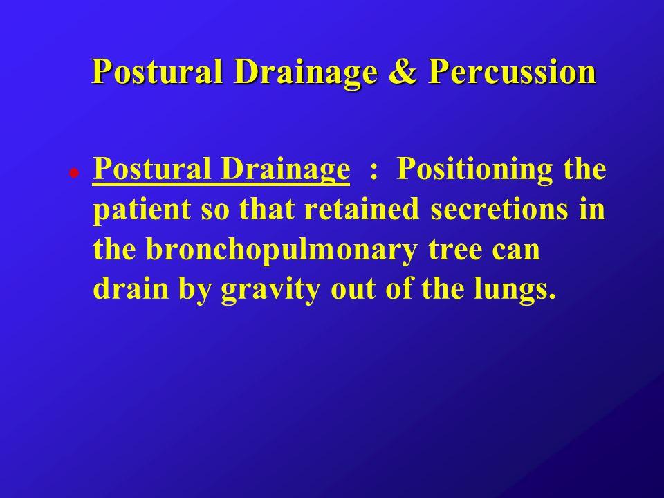 l Postural Position : u Prone flat