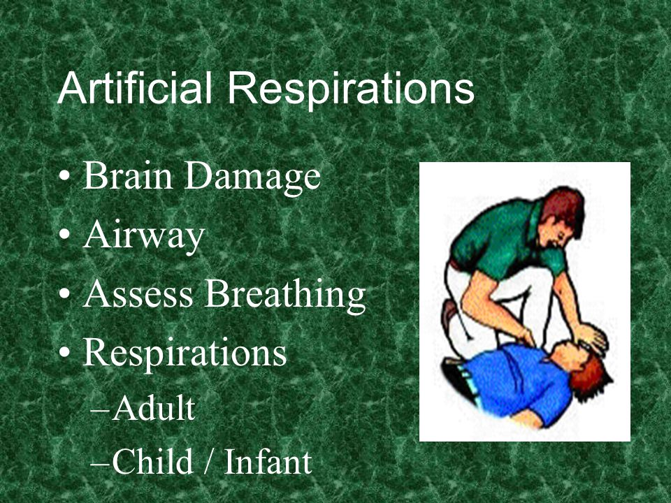 Artificial Respirations Brain Damage Airway Assess Breathing Respirations –Adult –Child / Infant