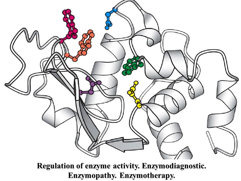 Regulation of enzyme activity. Enzymodiagnostic. Enzymopathy. Enzymotherapy.