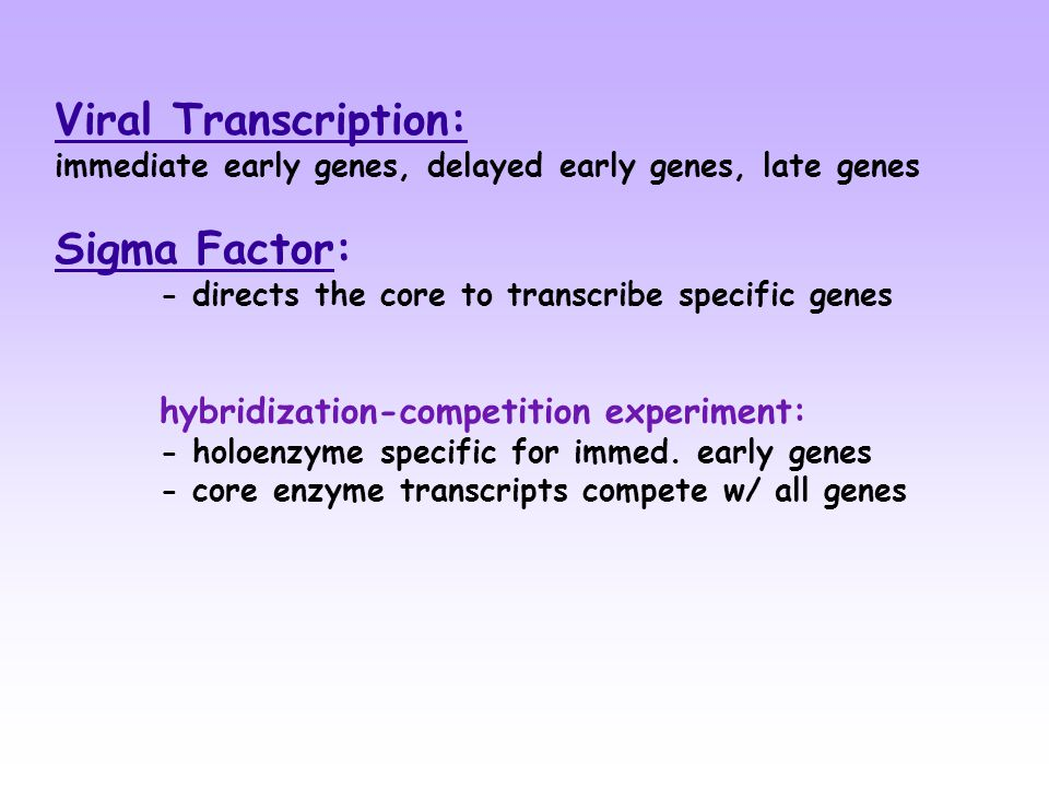 Viral Transcription: immediate early genes, delayed early genes, late genes Sigma Factor: - directs the core to transcribe specific genes hybridization-competition experiment: - holoenzyme specific for immed.