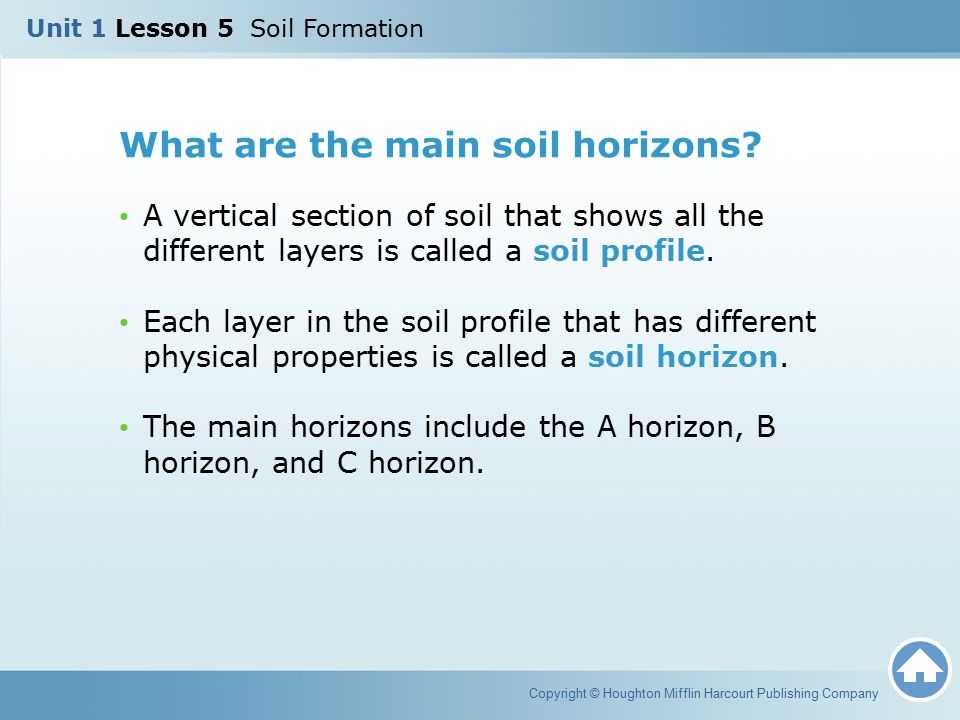 What are the main soil horizons? A vertical section of soil that shows all the different layers is called a soil profile. Each layer in the soil profi