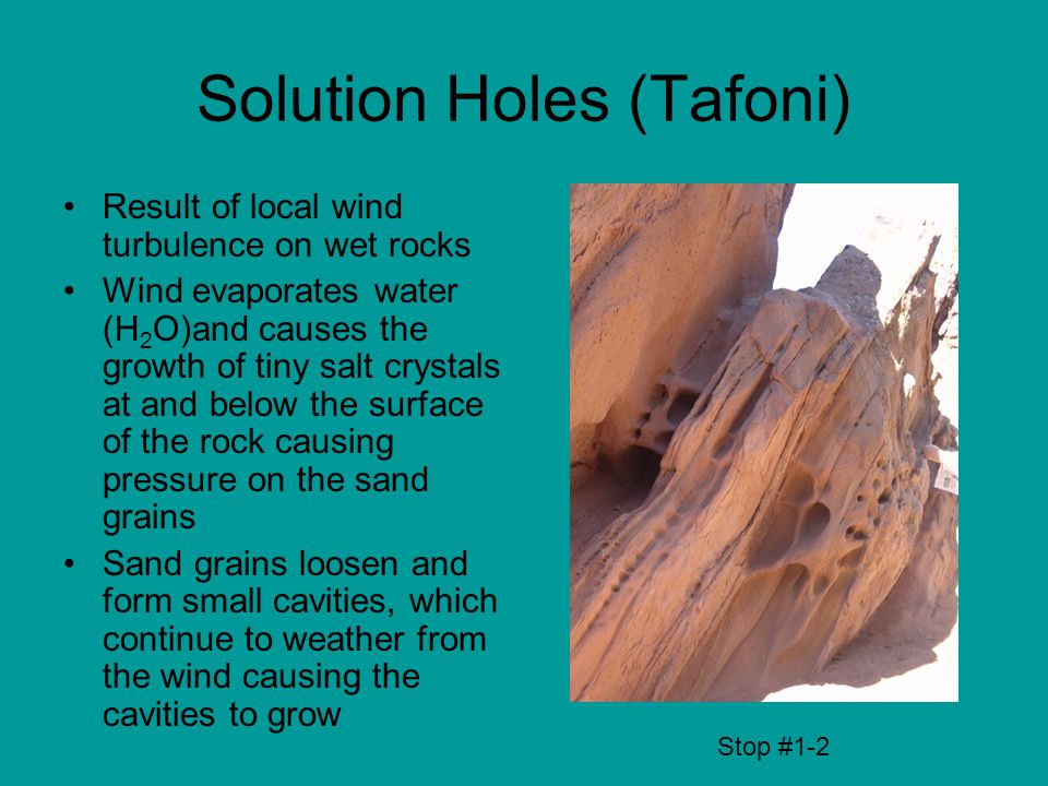 Solution Holes (Tafoni) Result of local wind turbulence on wet rocks Wind evaporates water (H 2 O)and causes the growth of tiny salt crystals at and below the surface of the rock causing pressure on the sand grains Sand grains loosen and form small cavities, which continue to weather from the wind causing the cavities to grow Stop #1-2