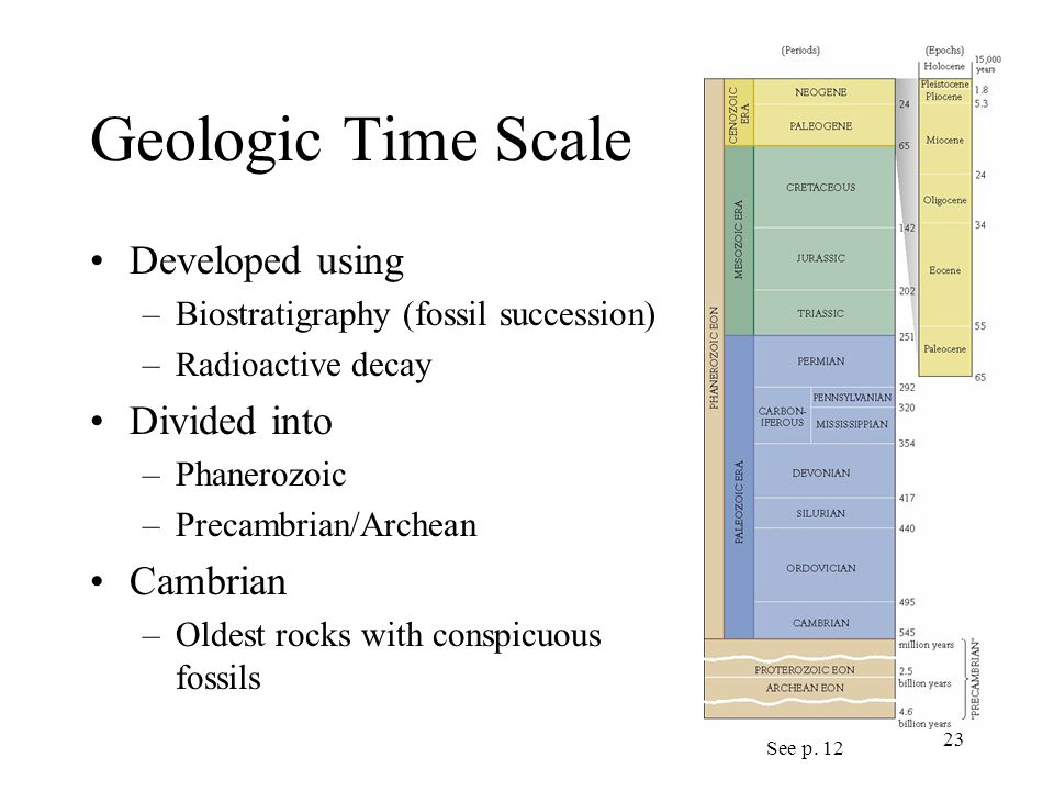 23 Geologic Time Scale Developed using –Biostratigraphy (fossil succession) –Radioactive decay Divided into –Phanerozoic –Precambrian/Archean Cambrian –Oldest rocks with conspicuous fossils See p.