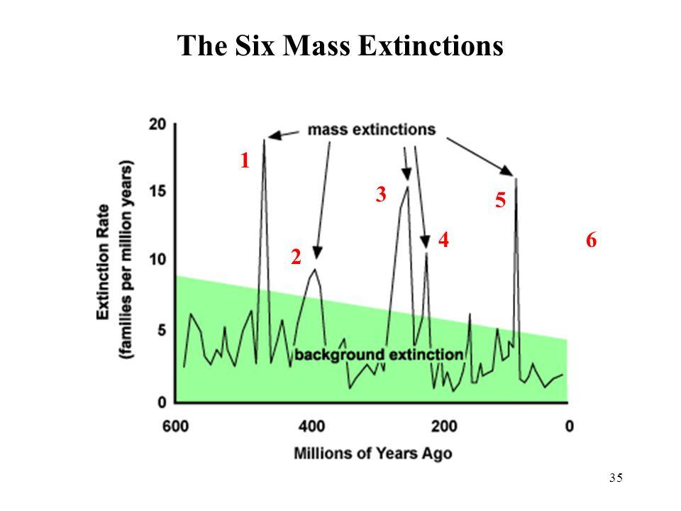 35 The Six Mass Extinctions 1 2 3 4 5 6