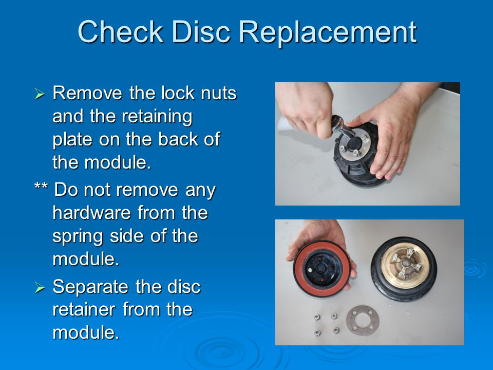 Check Disc Replacement  Remove the lock nuts and the retaining plate on the back of the module. ** Do not remove any hardware from the spring side of