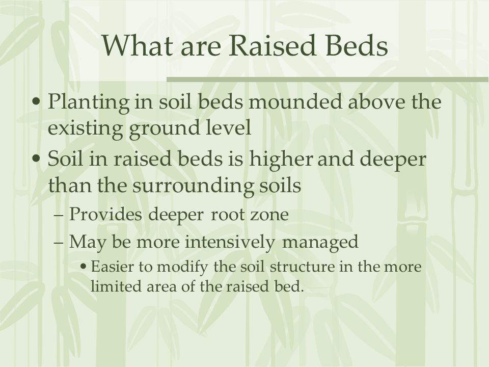 What are Raised Beds Planting in soil beds mounded above the existing ground level Soil in raised beds is higher and deeper than the surrounding soils –Provides deeper root zone –May be more intensively managed Easier to modify the soil structure in the more limited area of the raised bed.