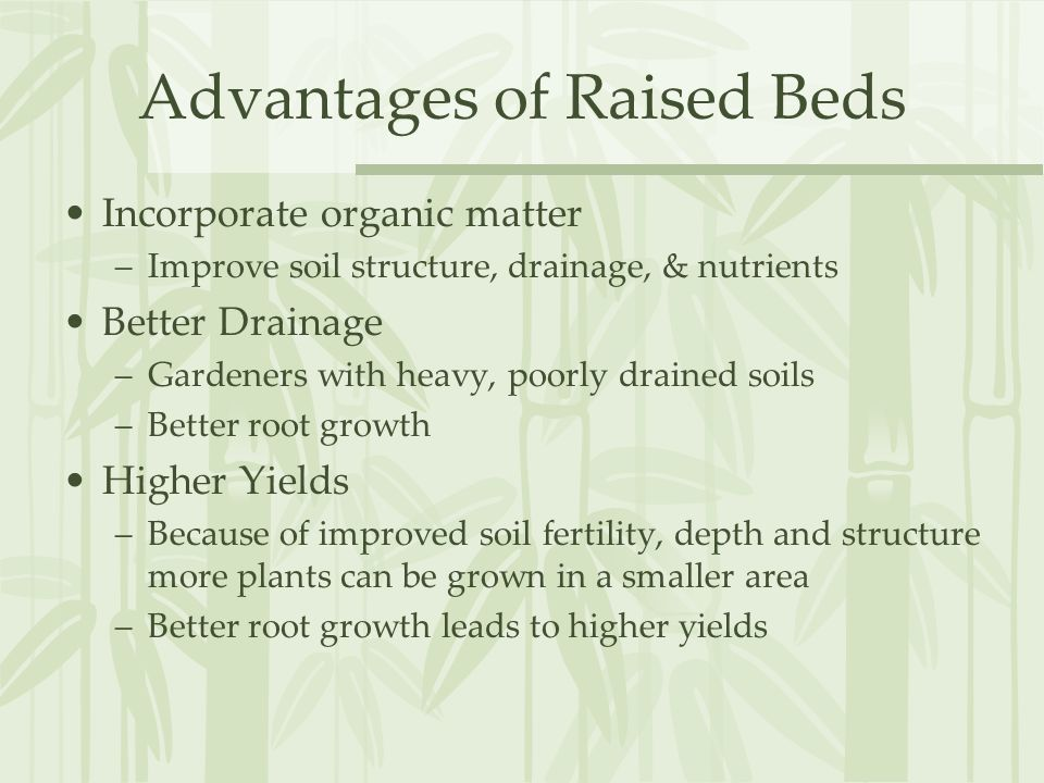 Advantages of Raised Beds Incorporate organic matter –Improve soil structure, drainage, & nutrients Better Drainage –Gardeners with heavy, poorly drained soils –Better root growth Higher Yields –Because of improved soil fertility, depth and structure more plants can be grown in a smaller area –Better root growth leads to higher yields