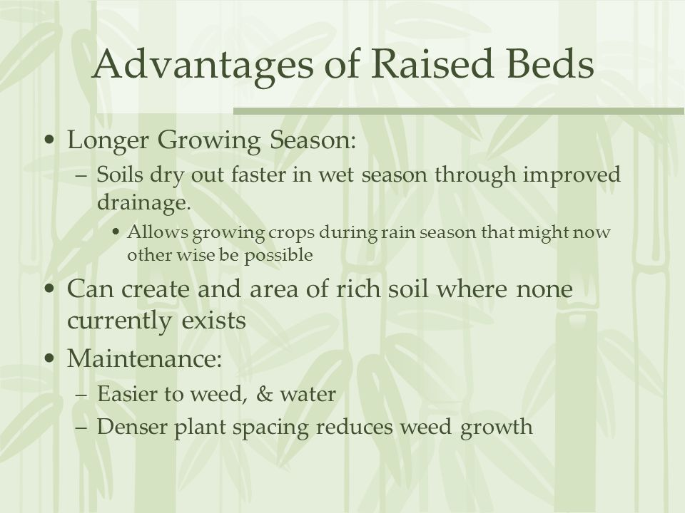 Advantages of Raised Beds Longer Growing Season: –Soils dry out faster in wet season through improved drainage.