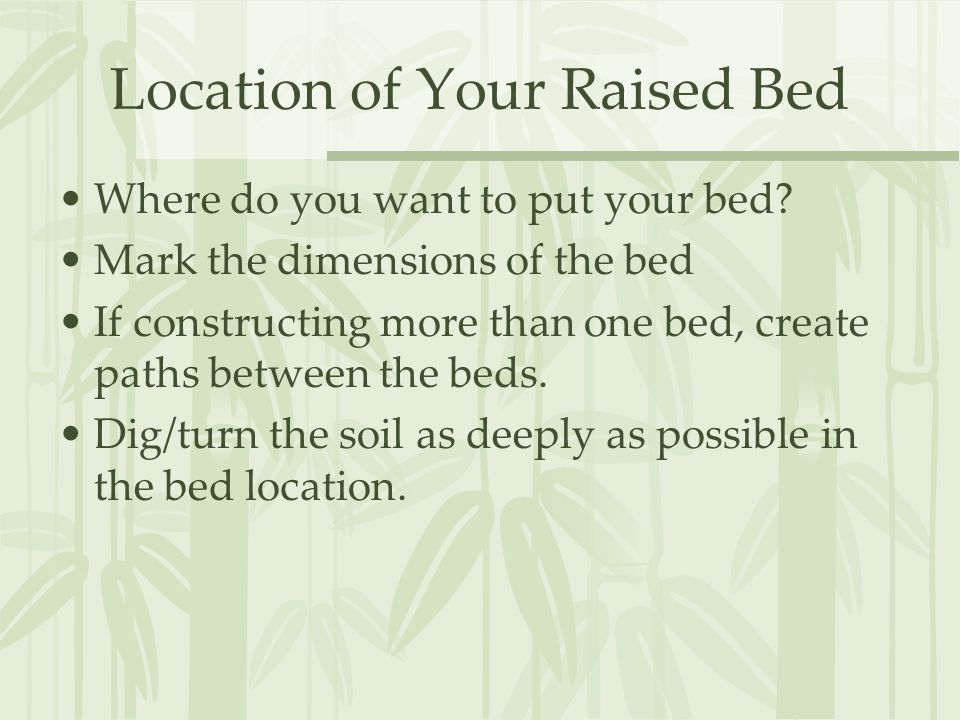 Location of Your Raised Bed Where do you want to put your bed.