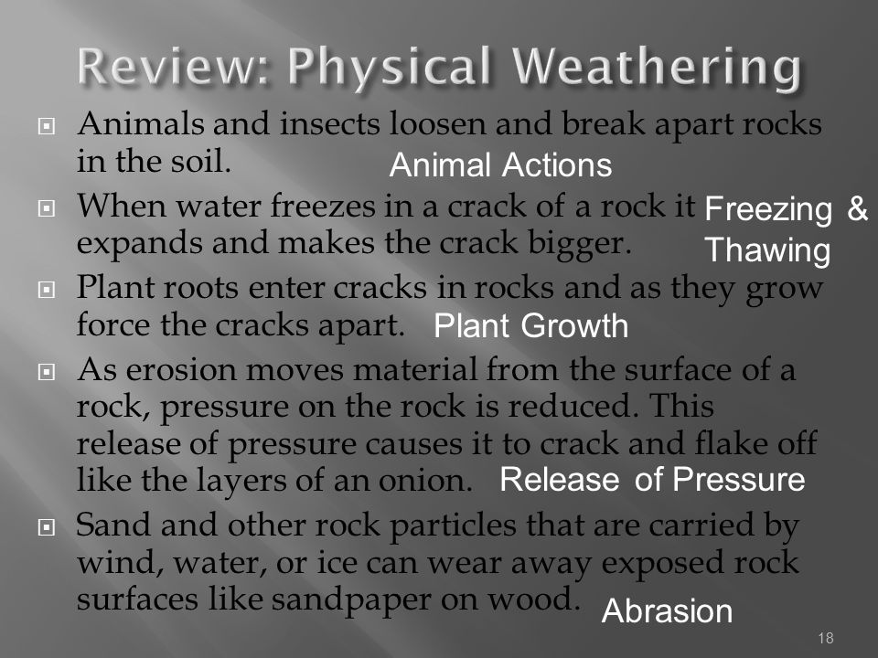  Animals and insects loosen and break apart rocks in the soil.  When water freezes in a crack of a rock it expands and makes the crack bigger.  Pla