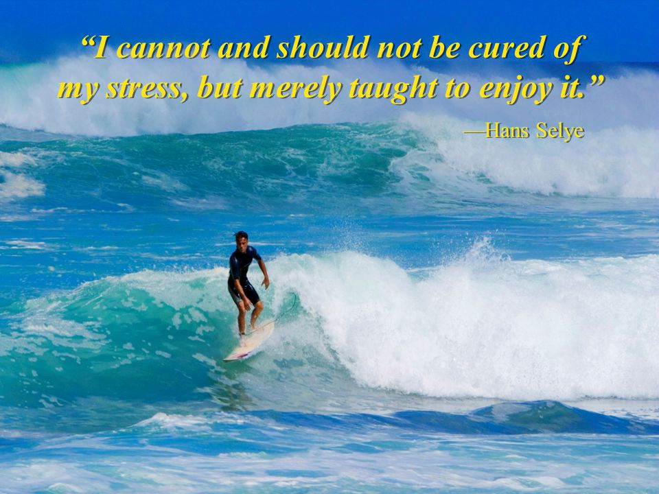 I cannot and should not be cured of my stress, but merely taught to enjoy it. —Hans Selye