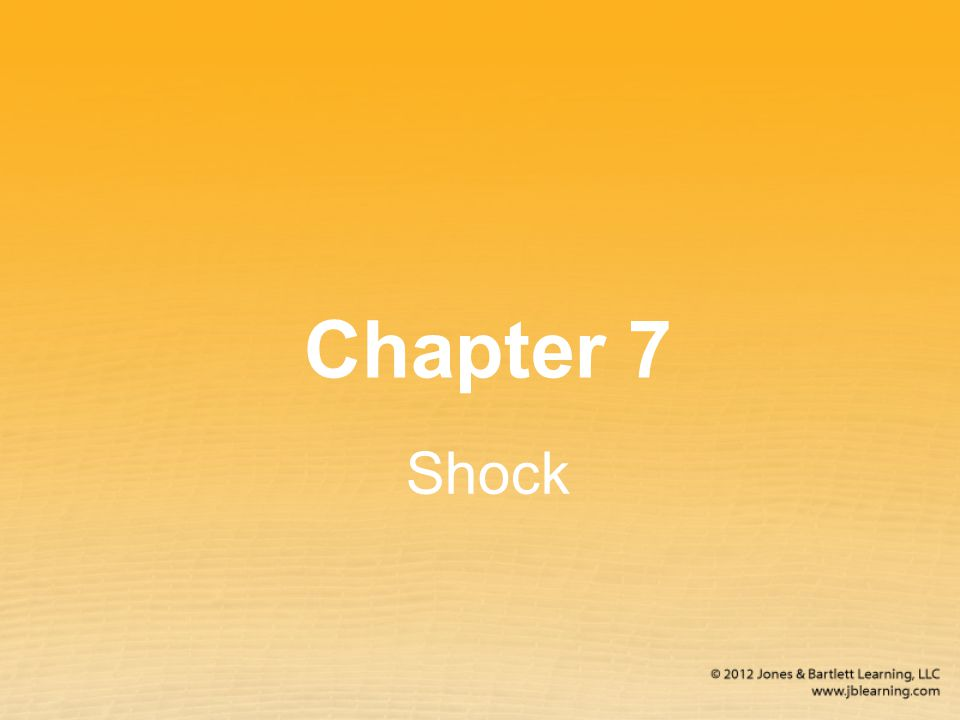 Chapter 7 Shock