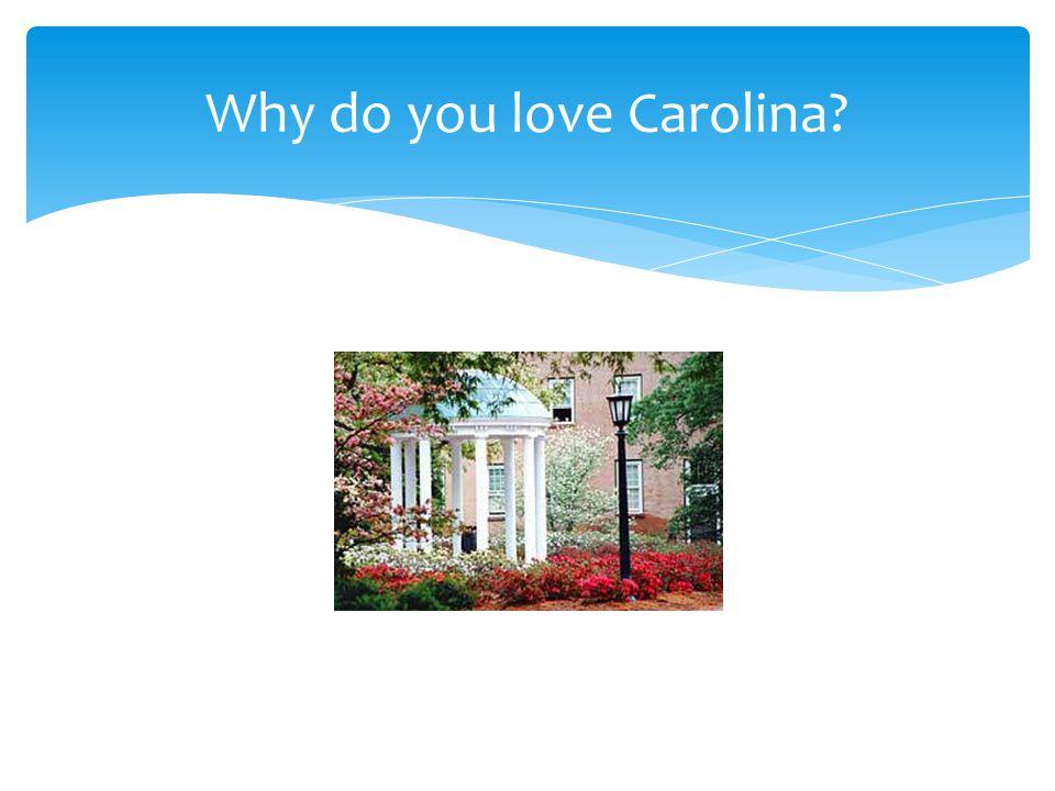 Why do you love Carolina?