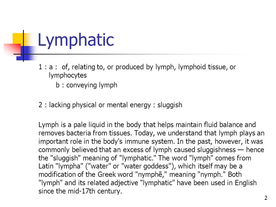 Characteristics of lymphatics Their wall contains three layers, just like blood vessels.