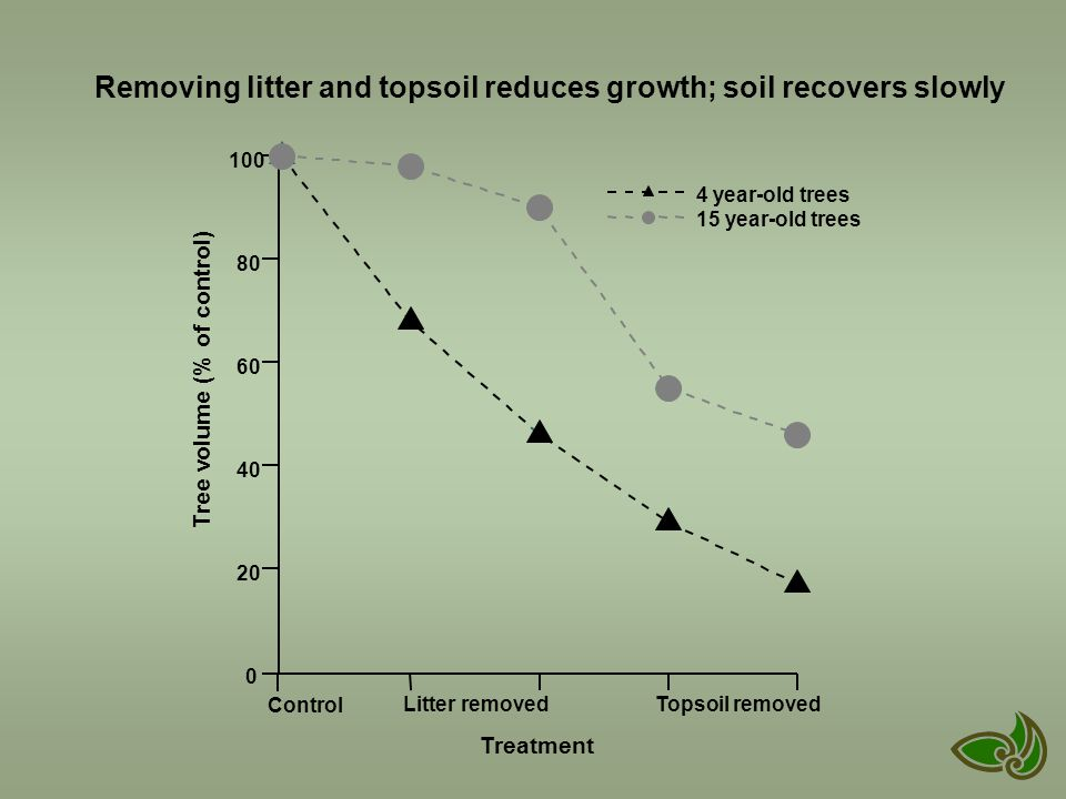 Control Litter removed Topsoil removed Treatment 0 20 40 60 80 100 Tree volume (% of control) 4 year-old trees 15 year-old trees Removing litter and topsoil reduces growth; soil recovers slowly