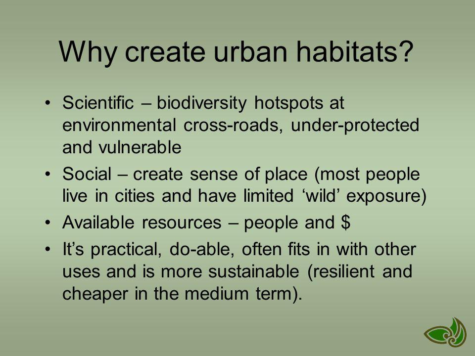 Why create urban habitats.