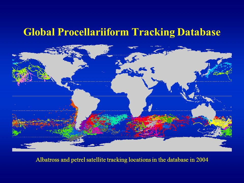 Global Procellariiform Tracking Database Albatross and petrel satellite tracking locations in the database in 2004