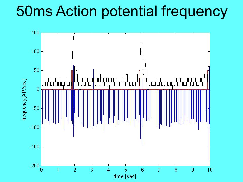 50ms Action potential frequency