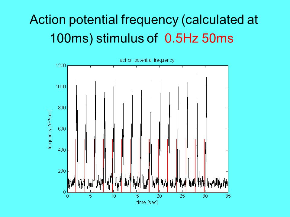 Action potential frequency (calculated at 100ms) stimulus of 0.5Hz 50ms