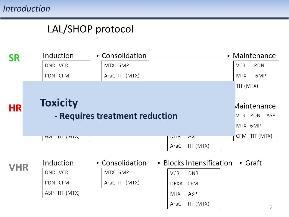 miRNA-related SNPs could be useful toxicity markers Conclusion Conclusión 27