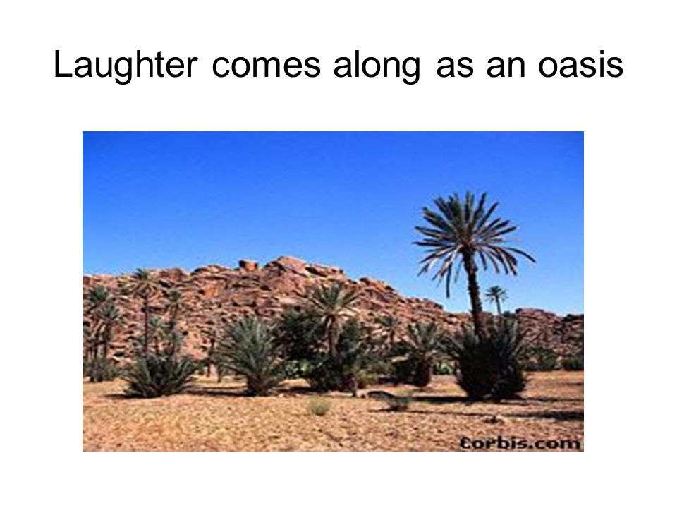 Laughter comes along as an oasis