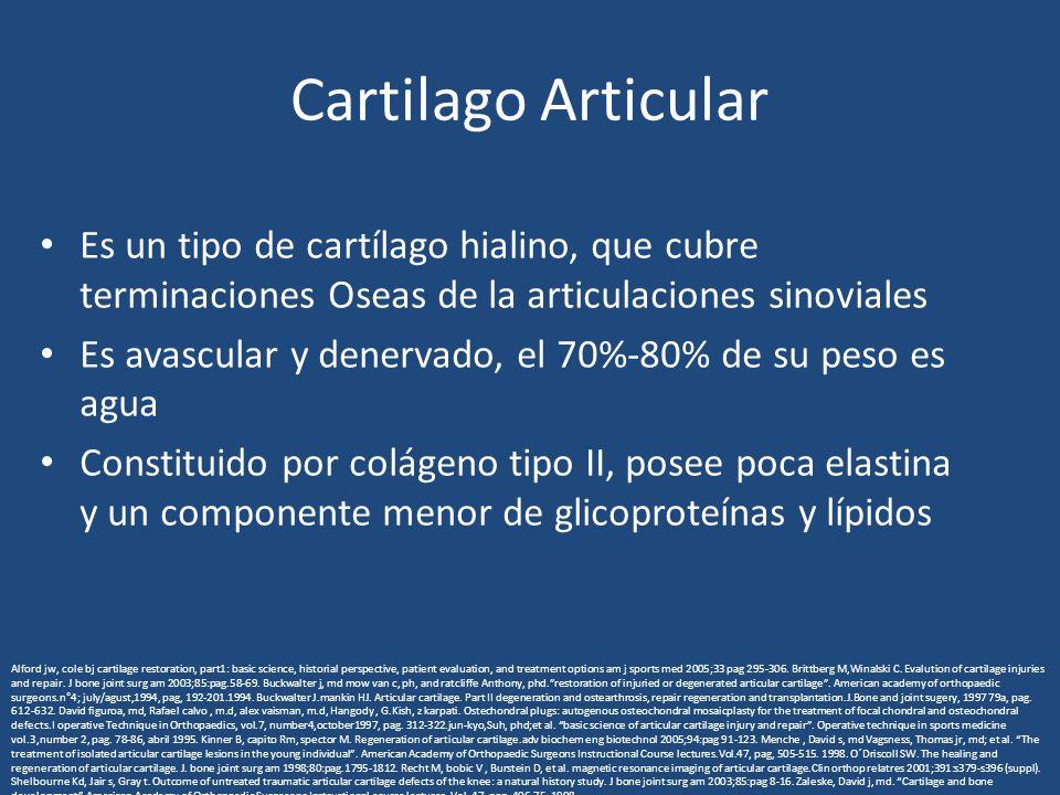 Cartilago Articular Es un tipo de cartílago hialino, que cubre terminaciones Oseas de la articulaciones sinoviales Es avascular y denervado, el 70%-80% de su peso es agua Constituido por colágeno tipo II, posee poca elastina y un componente menor de glicoproteínas y lípidos Alford jw, cole bj cartilage restoration, part1: basic science, historial perspective, patient evaluation, and treatment options am j sports med 2005;33 pag 295-306.