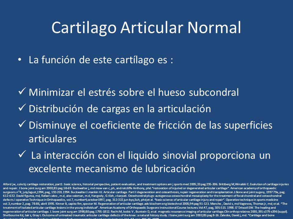 Cartilago Articular Normal La función de este cartílago es : Minimizar el estrés sobre el hueso subcondral Distribución de cargas en la articulación D