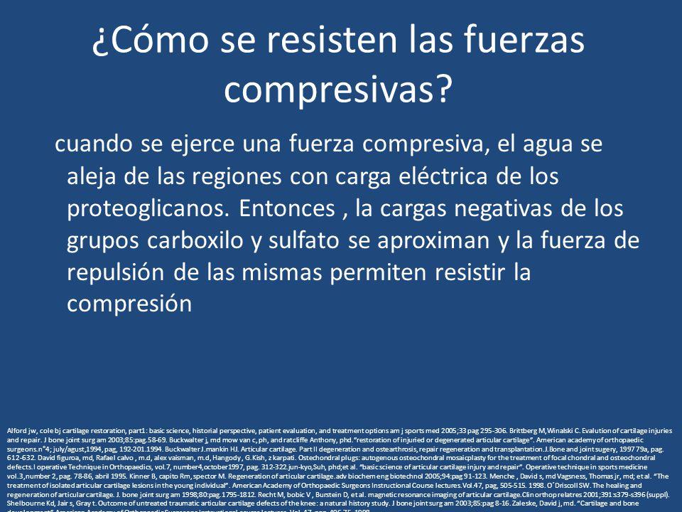 ¿Cómo se resisten las fuerzas compresivas? cuando se ejerce una fuerza compresiva, el agua se aleja de las regiones con carga eléctrica de los proteog