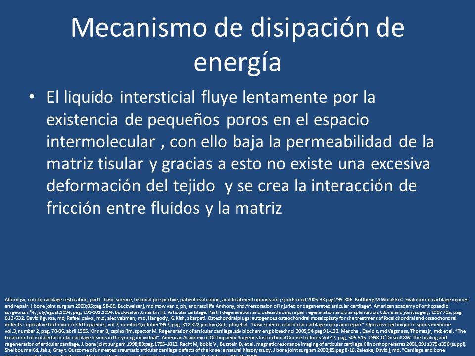 Mecanismo de disipación de energía El liquido intersticial fluye lentamente por la existencia de pequeños poros en el espacio intermolecular, con ello