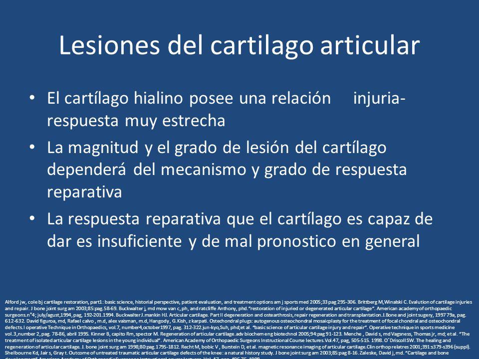 Lesiones del cartilago articular El cartílago hialino posee una relación injuria- respuesta muy estrecha La magnitud y el grado de lesión del cartílag