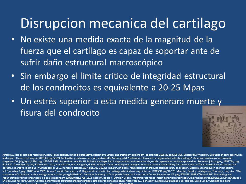 Disrupcion mecanica del cartilago No existe una medida exacta de la magnitud de la fuerza que el cartílago es capaz de soportar ante de sufrir daño estructural macroscópico Sin embargo el limite critico de integridad estructural de los condrocitos es equivalente a 20-25 Mpas Un estrés superior a esta medida generara muerte y fisura del condrocito Alford jw, cole bj cartilage restoration, part1: basic science, historial perspective, patient evaluation, and treatment options am j sports med 2005;33 pag 295-306.