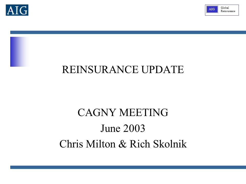 Global Reinsurance AIG REINSURANCE UPDATE CAGNY MEETING June 2003 Chris Milton & Rich Skolnik