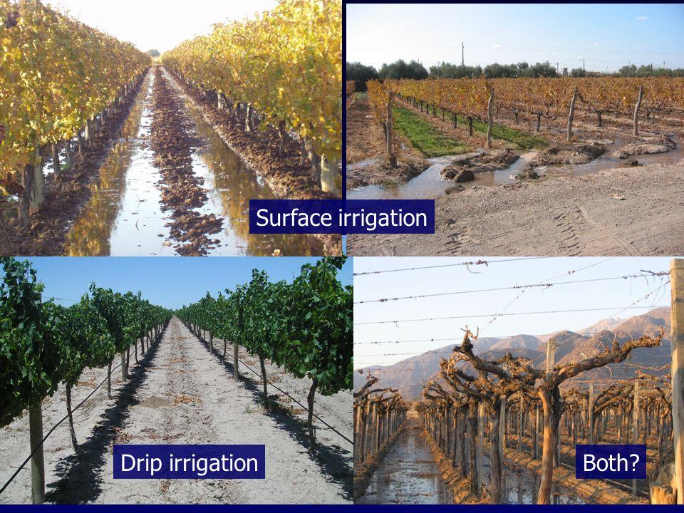Surface irrigation Drip irrigationBoth
