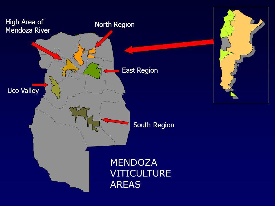 Este Mendocino South Region Uco Valley North Region High Area of Mendoza River East Region MENDOZA VITICULTURE AREAS