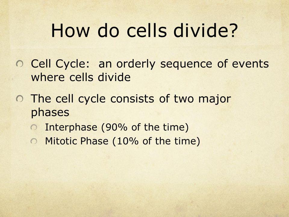 How do cells divide.